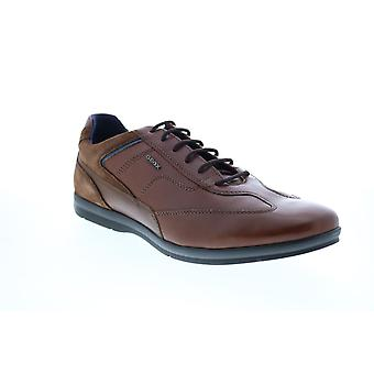 Geox U Adrien  Mens Brown Leather Euro Sneakers Shoes