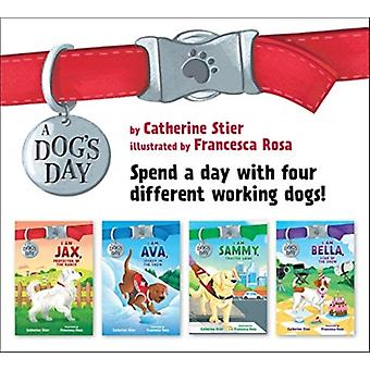 A Dogs Day Set 14 by Catherine Stier & Illustrated by Francesca Rosa