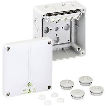 ה49040601 בקופסא המשותפת (L x W x H) 110 x 110 x 67 mm אפור IP65