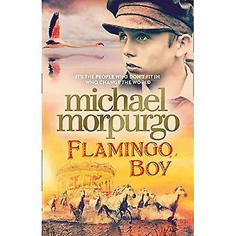 Flamingo Boy (gebundene Ausgabe)