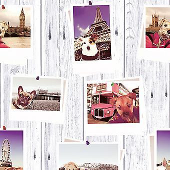 Selfie Dogs Landmark Wallpaper Muriva 102558