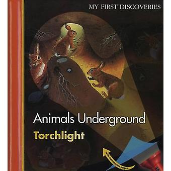 Animals Underground by Claude Delafosse & Translated by Sarah Gibson & Illustrated by Daniel Moignot