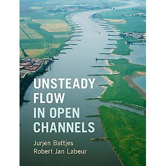 Unsteady Flow in Open Channels par Jurjen A. Battjes