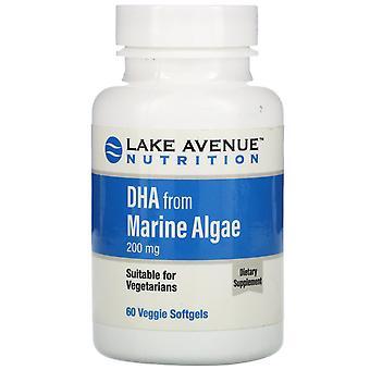 Lake Avenue Nutrition, DHA from Marine Algae, Vegetarian Omega, 200 mg, 60 Veggi