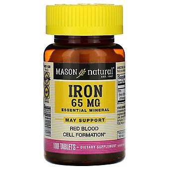 Mason Natural, Iron, 65 mg, 100 Tablets