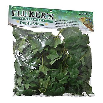 Flukers engelska Ivy Repta-Vines - 6' Lång
