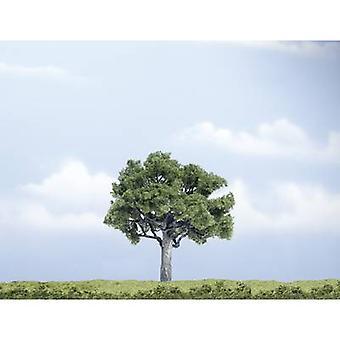 Woodland Scenics WTR1622 Árvore de nogueira 100 mm 1 pc (s)