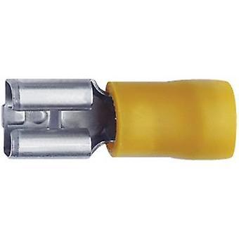 Klauke 750 blad kärl Connector bredd: 6,3 mm kontakten tjocklek: 0,8 mm 180 ° delvis isolerade gul 1 dator