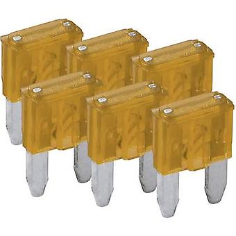FixPoint SORTIMENT 1027-5A KFZM-Sicherung 6 tlg. 20387 Mini blade-type fuse 5 A Beige 6 pc(s)