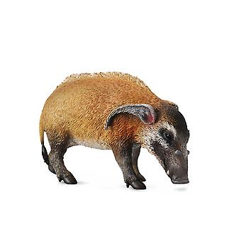 CollectA Red River Hog
