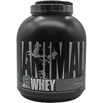 Universal Nutrition Animal Whey - 54 Servings - Chocolate Chocolate Chip