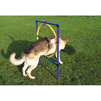 Pet Marche Agility Cane Hoop Jump