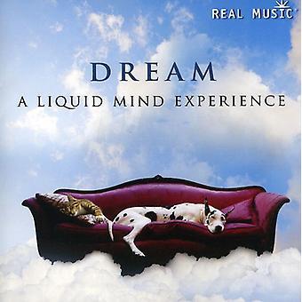 Liquid Mind - Dream: A Liquid Mind Experience [CD] USA import