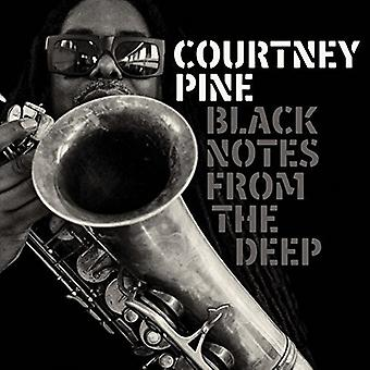 Pine*Courtney - Black Notes From the Deep [CD] USA import