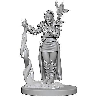Icônes Druide D&D femelles humaines des royaumes Premium Figures (Pack de 6)