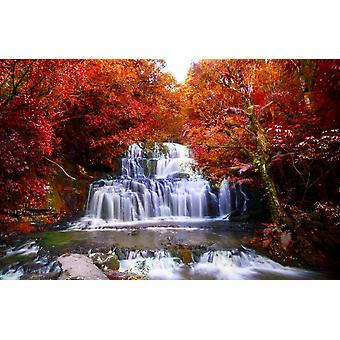 Vægmaleri smukke vandfald i regnskoven