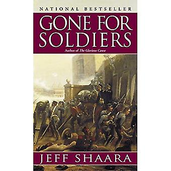 Allé pour les soldats: un roman de la guerre du Mexique