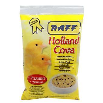 Raff Holland Cova   (Birds , Hand Rearing)