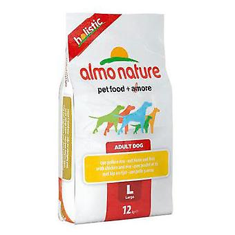 Almo nature Holistic Large Adult Salmon (Dogs , Dog Food , Dry Food)