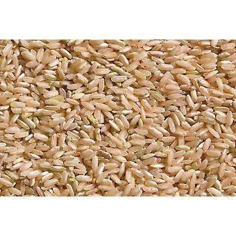 Lundberg Long Grain Brow N Rice Non-organic-( 24lb )