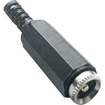 Voedingsconnector van de BKL elektronische 072208 lage Socket, rechte 5.5 mm 2.1 mm 1 PC('s)