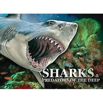 Sharks & Predators of the Deep by Susan Barraclough - 97817827458