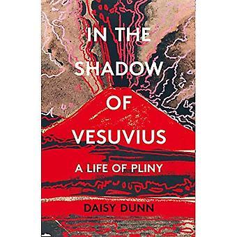 Dans l'ombre du Vésuve : une vie de Pline