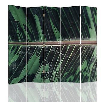 Dekorative Raumteiler, 5 Paneele, doppelseitig, drehbar 360 ?? Leinwand, Blattstruktur 2