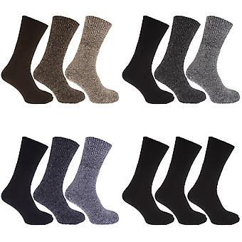 Mens Thermal Non Elastic Wool Blend Socks (2.1 Tog) (Pack Of 3)