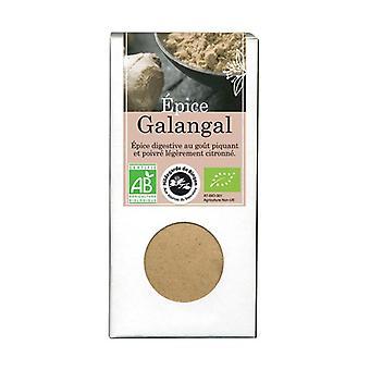 Galangal Spice 35 g