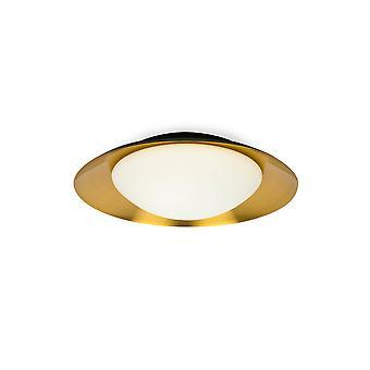 LED Indoor Medium Flush Wall Light Black, Rame