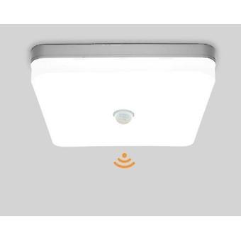 Led Ceiling Lamp, Pir Motion Sensor, Mordern Ceiling Lights For Foyer Hallways