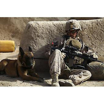 En hundefører og hans militære brugshund uddannet til at finde militær kvalitet og hjemmelavede sprængstoffer resten under en patrulje bryde i Afghanistan plakat Print
