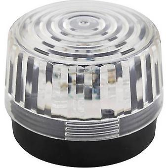Velleman Light HAA100WN 12 V DC