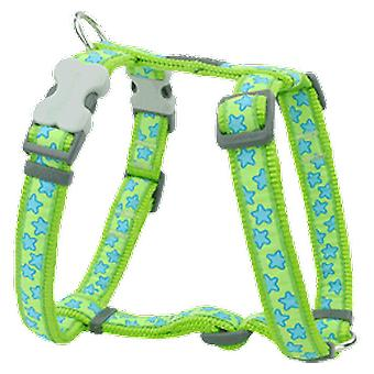 Red Dingo Harness One Touch Style Stars Green
