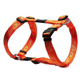 Rogz Harness Nitelife Small (Dogs , Collars, Leads and Harnesses , Harnesses)