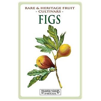 Figs Rare and Heritage Fruit Cultivars 13 by Thornton & C