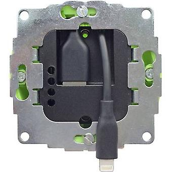 Smart Things AC/DC PSU module s24 l Compatible with Apple devices: iPad