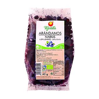 Freeze Dried Cranberry 40 g