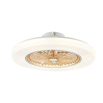 72w Led Dimming Remote Control Ceiling Fans Lamp - Invisible Leaves 58cm Modern