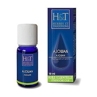 Ajowan essential oil (Trachyspermum ammi) 10 ml of essential oil
