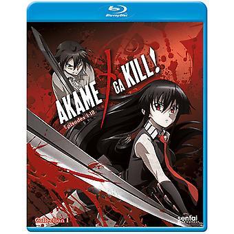 Akame Ga Kill 1 [Blu-ray] USA import