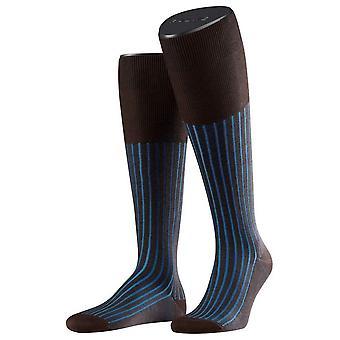 Falke ombre haute de genou chaussettes - marron/bleu