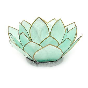 Turquoise Capiz Shell Blooming Lotus Flower Blossom Tealight Candle Holder