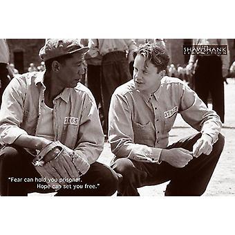 Die Verurteilten Poster  Tim Robbins, Morgan Freeman