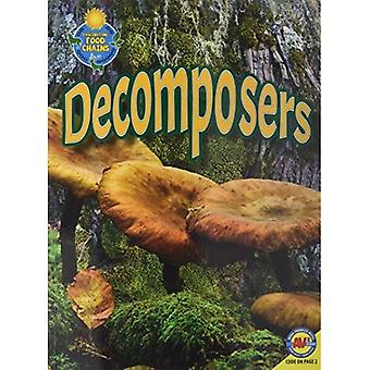 Decomposers (Fascinating Food Chains)