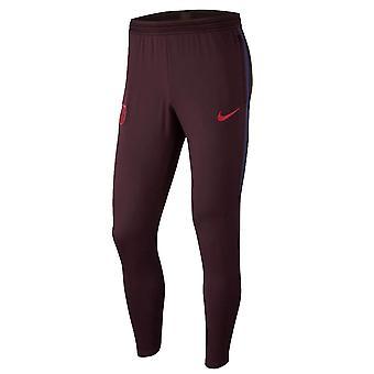2019-2020 Barcelona Nike Training Pants (Burgund)