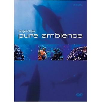 Pure Ambience-Therapeutic Temple [DVD] USA import