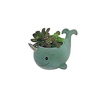 Streamline NYC Narwhal Planter Pot