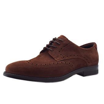 ECCO 621664 Melbourne Brandy - Men's Lace-up Brogue Shoes In Brandy Suede